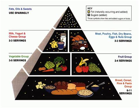 la piramide degli alimenti federica la piramide alimentare