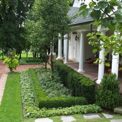 best shrubs for front yard hedges ground cover formal gardens