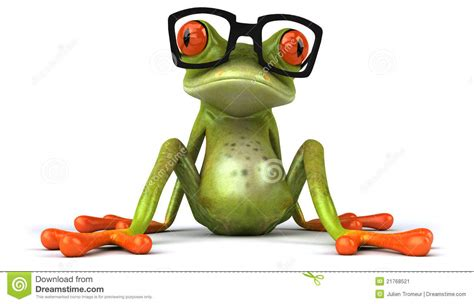 with glasses frog with glasses stock image image 21768521