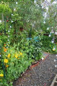 Vertical Garden Mesh Vertical Gardening With Concrete Wire Mesh Grow Resist