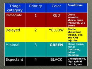 triage colors 1000 images about nursing on assessment
