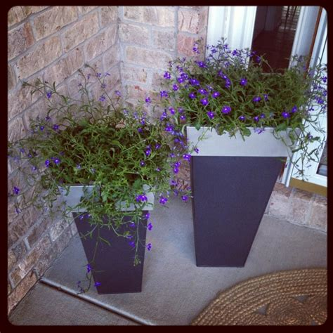 Front Porch Planters Front Porch Ideas Pinterest Front Porch Planter Ideas