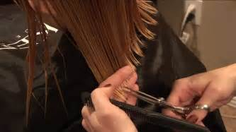 trimmed hair pictures how to cut girls hair basic girls trim hair tutorial