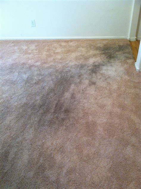 top 323 complaints and reviews about home depot floors
