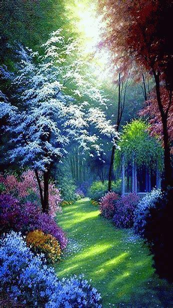 imagenes lindas naturaleza gifs hermosos cosas bonitas encontradas en la web