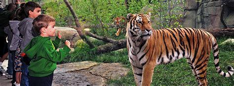 does lincoln park zoo elephants indianapolis zoo membership