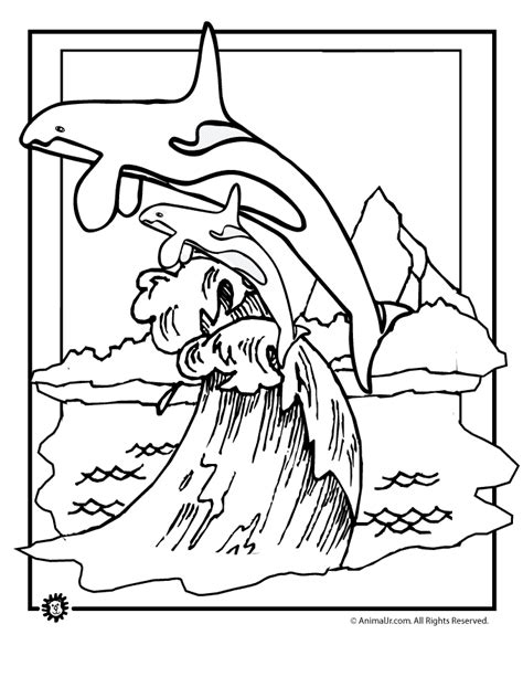 free coloring pages killer whale orca whale coloring pages coloring home