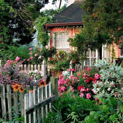 cottage garden fence 250 best images about beautify with flowers fence on