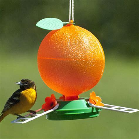 duncraft com plastic orange oriole feeder