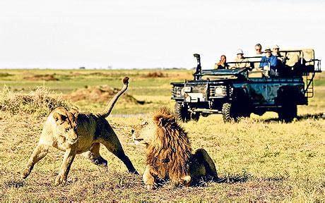 best safaris in the world safaris in africa