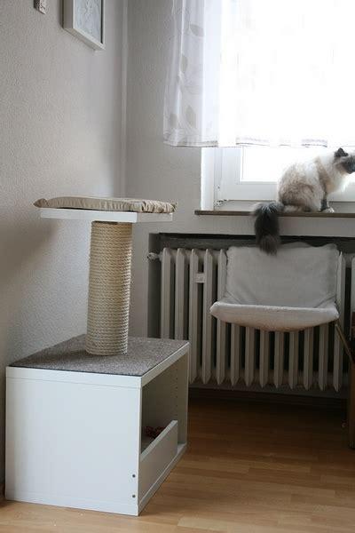 wohnung katzengerecht eine wohnung wird katzengerecht gebastelt seite 2 do