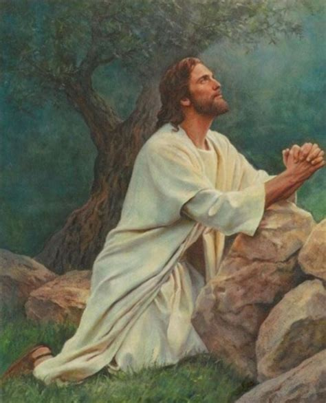 imagenes orando a jesus jes 250 s orando en getsemani imagenes de jesus fotos de jesus