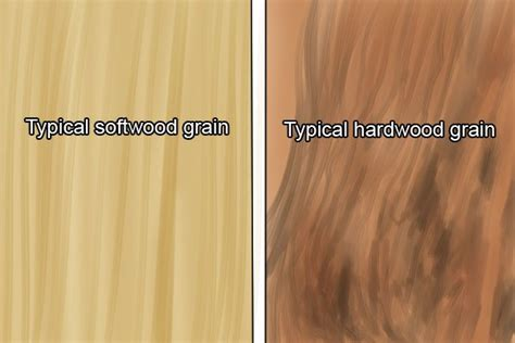 what is softwood