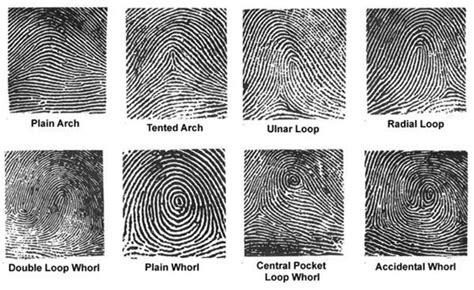 pattern classification wiki integrated biometrics fbi certified fingerprint scanners