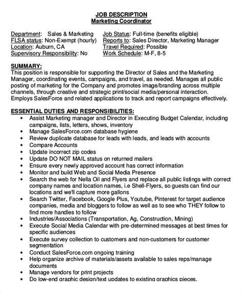 sle marketing coordinator description 9 exles in pdf word