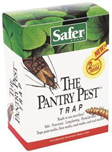 Safer The Pantry Pest Trap by Getting Rid Of Moths Effective Moth Propane