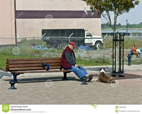 bench manly senior man resting on a bench editorial photography