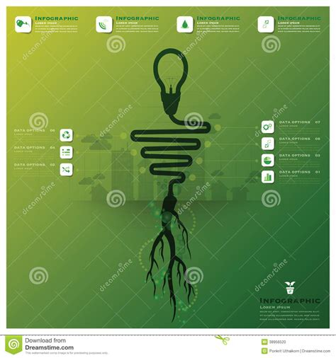 Root For Light by Light Bulb Tree And Root Infographic Stock Vector Image 38956520