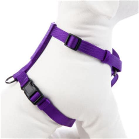 petsmart leash shop petsmart harness on wanelo