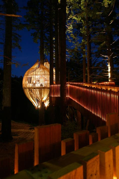 yellow treehouse restaurant   zealand pacific environments architects