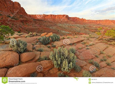 desert landscape stock photo image 58278575