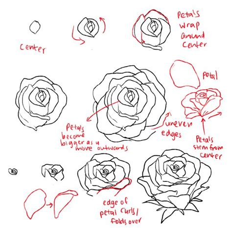 Best 25 How To Draw Roses Ideas On Easy