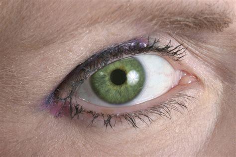 imagenes de ojos verdes para facebook el color de tus ojos dice mucho m 225 s de ti de lo que crees