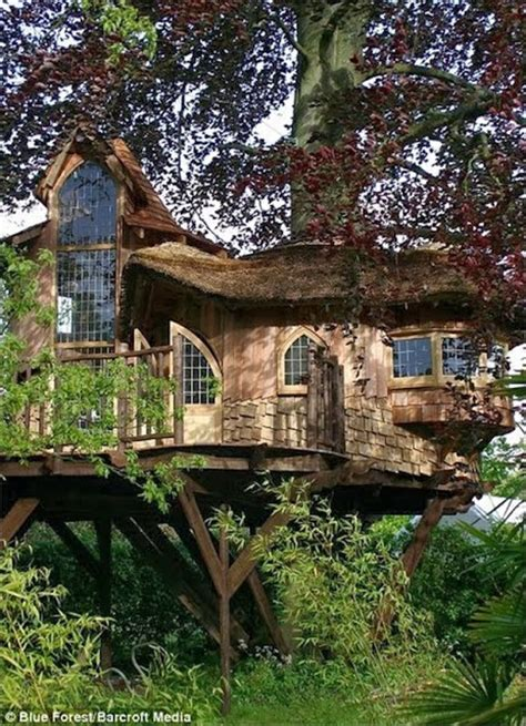 tree house home mindblowing planet earth world s best tree house