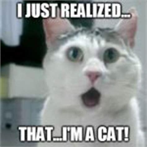 Omg Cat Meme - omg cat meme generator imgflip
