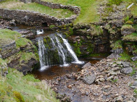 my yorkies keep watering blakethwaite waterfalls my dales