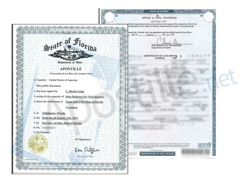 State Of Florida Records Birth Certificates 1000 Images About State Of Florida Sle Apostille On To Be Birth
