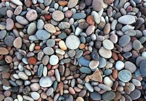 landscape pebbles everything you need to about using pebbles in the