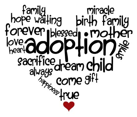 wisdom from adoptive families joys and challenges in child adoption books adoption a loving saving realistic option nrl