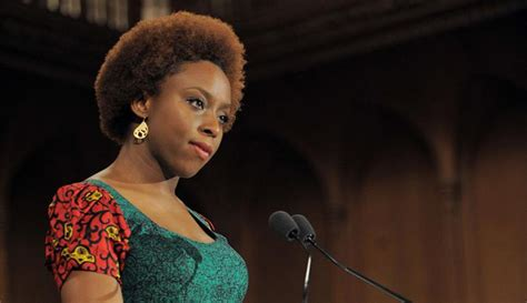 my personal opinion about chimamanda ngozi adichie buhari wasted opportunity for reform chimamanda