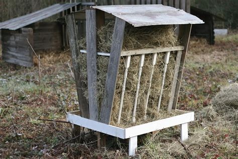 Hay Feeders For Goats kornerstone farms goat hay feeder