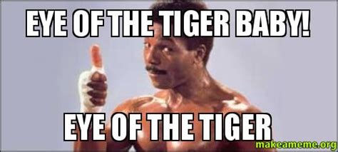 Eye Of The Tiger Meme - eye of the tiger baby eye of the tiger make a meme