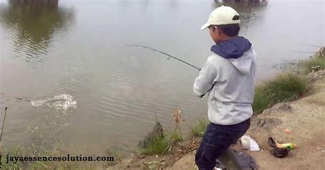 Pancing Kecil trik mancing ikan harian uh jaya essen solution
