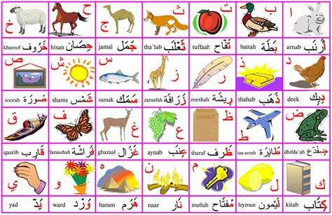 lettere alfabeto arabo perch 233 gli arabi scrivono da destra verso sinistra