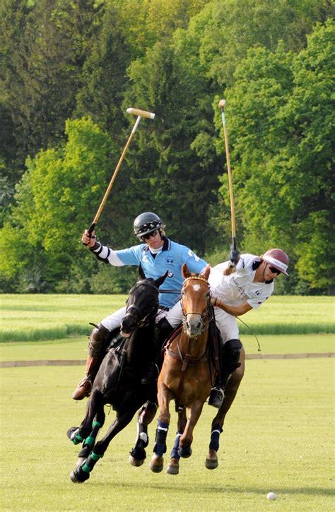 the sport of kings polo sport of kings engel v 246 lkers