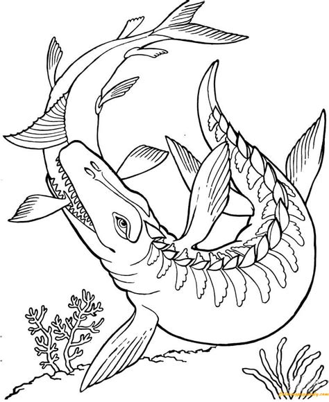 dinosaur pictures to color mosasaurus dinosaur coloring page free coloring pages