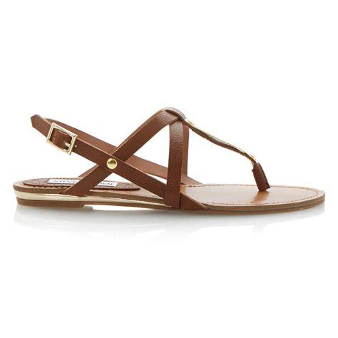 steve madden sandals flat steve madden junyaa flat sandals in brown lyst