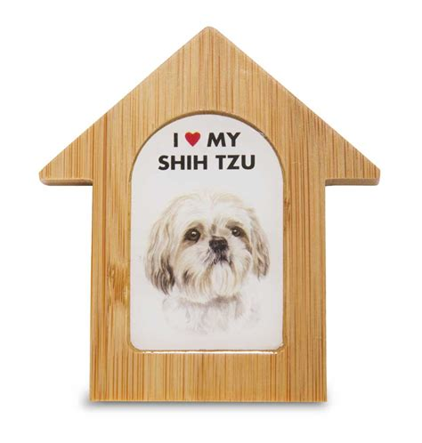 shih tzu house shih tzu house 28 images there s a shih tzu puppy in the house macuha best 25