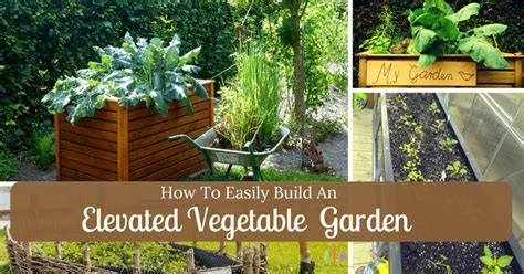 How To Make A Vegetable Garden by How To Easily Build An Elevated Vegetable Garden