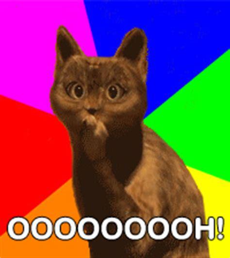 Ooh Face Meme - image 206801 ooh cat know your meme