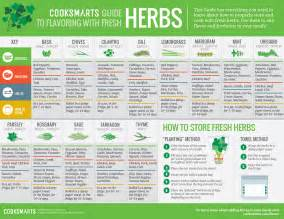 herbs chart keep it fresh with herbs fresh herbs infographic and herbs