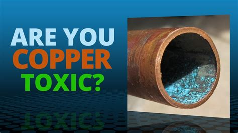 Copper Detox by Copper Toxicity Risk Symptoms And Treatment Strategies