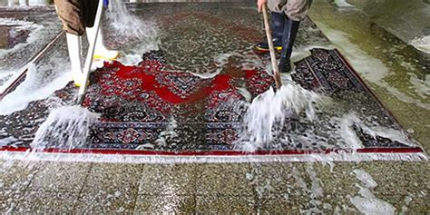 alten teppich reinigen teppich selber waschen 02193220170919 blomap