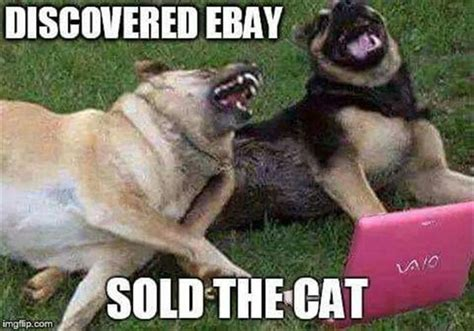 Joking Dog Meme - 20 funny animal pictures to get you out of a bad day
