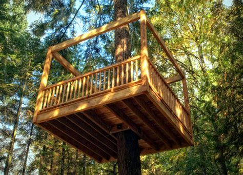 Childrens Treehouses Tree House From The Childrens Elevated Living S Eco Friendly Tree Homes Take Outdoor