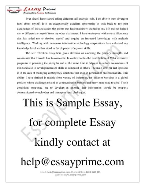 Who Am I Essay by Essay On Who Am I Madrat Co
